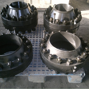 Orifice Welded Neck Flanges, 10 Inch, 900LB, RF